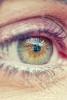 Photo macro yeux